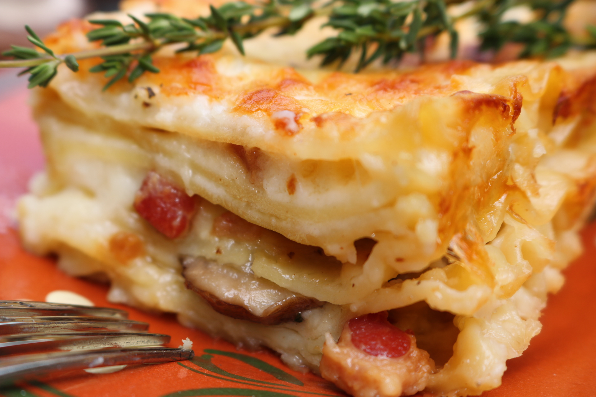 White lasagna with swiss cheese - This decadent lasagna has pancetta, mushrooms, thyme and swiss cheese. It is the ultimate comfort food ~ www.mangiamichelle.com