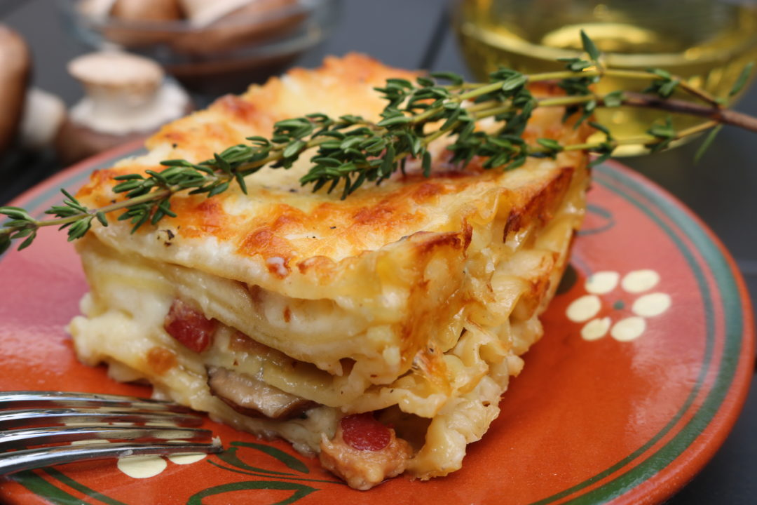 White lasagna with swiss cheese